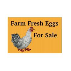 Shop Eggs For Sale Yard Sign created by goldersbug. Eggs For Sale, Custom Yard Signs, Lake Signs, Corrugated Plastic, Sign Display, Advertising Signs, Indoor Garden, Yard Sales, Hens