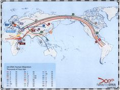 This map shows each of the major (backbone) maternal haplogroups' paths out of Africa.