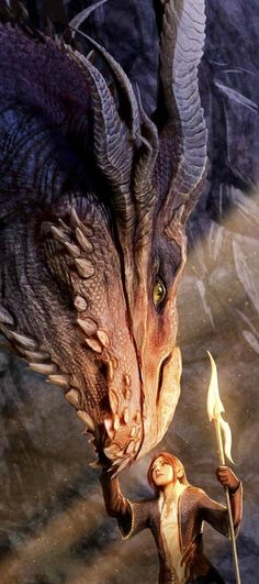 Ok........ she approached a dragon incorrectly she did not hold out her hands and she did not put down her weapon.... if i were the dragon i would have burned her to a crisp for showing me such disrespect... ugh.... learn manners to dragons... they deserve respect twice as much as we do...... pa-lease!!..... Lol jk its beautiful <3