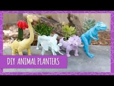DIY Cute Dinosaur Planters- HGTV Handmade (Would be fun to put one on the bright table on the deck)