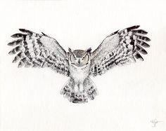 great_horned_owl_by_wingedkobrathethird-d86i5ta.jpg (2909×2309)