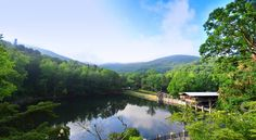 Springtime in Montreat, NC