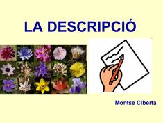 LA DESCRIPCIÓ Montse Ciberta School, Text Types, Writing, Reading, Activities