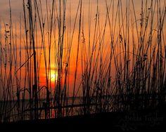Sunrise  Norfolk, Virginia