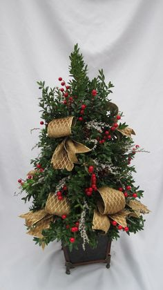 A Boxwood Christmas Tree | Christmas | Pinterest | Christmas tree ...