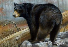 Paintings by international wildlife artist Rebecca Latham. Featuring North American animals, birds, & nature in watercolor painted in miniature. Bear Paintings, Wildlife Paintings, Small Paintings, Watercolor Paintings, Art D'ours, North American Animals, Timberwolf, Wolf Painting, Bear Drawing