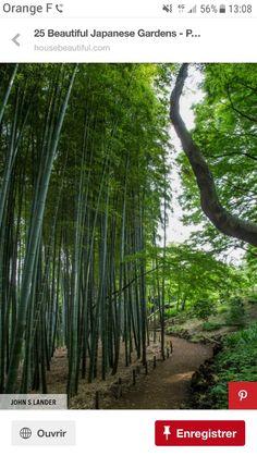 Tokyo Tonogayato Garden