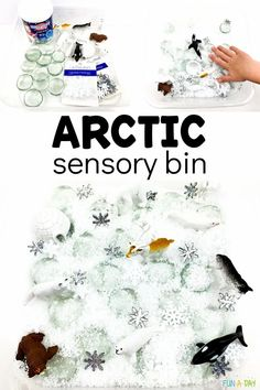 This fake snow Arctic sensory bin is just right for preschoolers learning about Arctic animals. Early Learning Activities, Fun Classroom Activities, Creative Activities For Kids, Kindergarten Fun, Preschool Themes, Creative Play, Sensory Activities, Winter Activities, Graphing Games