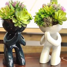plants decoration in living room Ceramic Flower Pots, Ceramic Planters, Succulents In Containers, Planting Succulents, Cacti Garden, Succulent Planters, Hanging Planters, House Plants Decor, Plant Decor