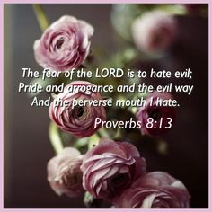 """""""To fear the LORD is to hate evil; I hate pride and arrogance, evil behavior and perverse speech. Proverbs Chapter 1, Proverbs 8, Scripture Quotes, Bible Verses, Fake Christians, Living Bible, Wisdom Books, Knowledge And Wisdom, Fear Of The Lord"""