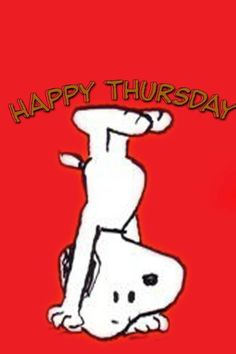 Happy Thursday / Upside down Snoopy Thursday Greetings, Happy Thursday Quotes, Thursday Humor, Thankful Thursday, Hello Thursday, Happy Tuesday, Happy Saturday, Charlie Brown Quotes, Charlie Brown And Snoopy