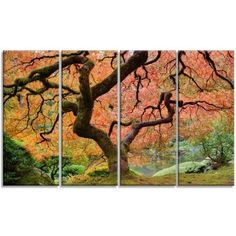 DesignArt Autumn Maple Tree Landscape 4 Piece Photographic Print on Wrapped Canvas Set