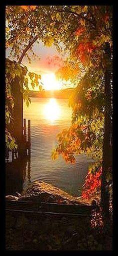 AMAZING SUNSET in PARK #by Juliane Kaiser #park landscape sunset color nature sun light tree fall season wood outdoors http://itz-my.com