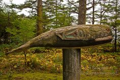 Photographs of totems, from the grounds around the long house at Kasaan Village, Alaska, located on the Inside Passage of Alaska Long House, Totems, First Nations, Alaska, Whale, Nature Photography, Outdoor Decor, Sculpture, Totem Poles