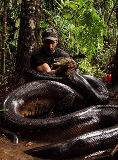 """This Explorer Fed Himself to an Anaconda While Wearing a """"Snake-Proof"""" Suit, and You Can Watch!  Paul Rosolie, Anaconda"""
