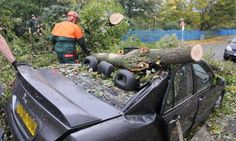 Three people have died, hundreds of thousands of homes have been left without power and travellers suffered transport chaos after hurricane-...