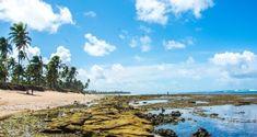 O litoral norte da Bahia é um dos mais bonitos trechos do litoral baiano.  A chamada Costa dos Coq...