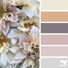 Tones today's inspiration image for { petaled hues } is by . thank you, Jenny, for sharing your gorgeous photo in !today's inspiration image for { petaled hues } is by . thank you, Jenny, for sharing your gorgeous photo in !
