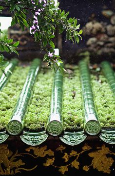 Travel Asian Architecture green rooftop - you could make the cylinders a type of watering device Asian Architecture, Architecture Details, Japanese House, Japanese Art, Traditional Japanese, Japan Kultur, Roof Detail, Art Japonais, Japanese Culture