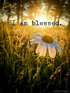 #successwk-31 #affirmation. I am #blessed. So are you.
