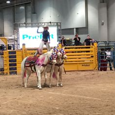 National Finals Rodeo in Las Vegas, NV