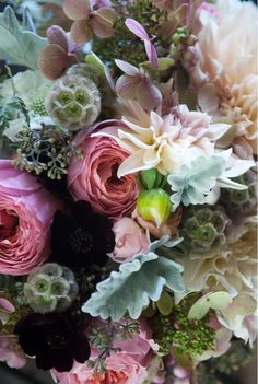 I love how this bouquet is photographed - the flowers almost look like ocean coral and anemones...
