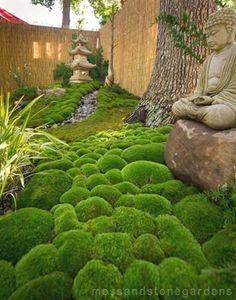 A very small but beautiful moss garden. Moss & Stone Gardens #japanese garden #japanesegarden #japanesegardening