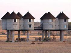 La destination favorite des amateurs de grands espaces et de faune sauvage ! Cet hôtel associe écotourisme responsable et proximité de la na...