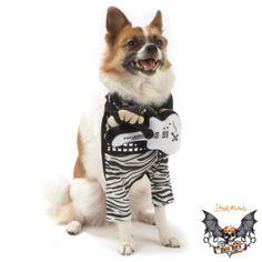 Bret Michaels Rock Star Halloween Costume for Dogs - PetSmart