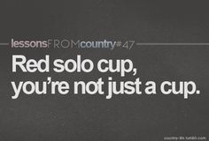 lessons from country- red solo cup! Country Lyrics, Country Music Stars, Country Songs, Country Life, This Is Your Life, Story Of My Life, Red Solo Cup, Down South, Thats The Way