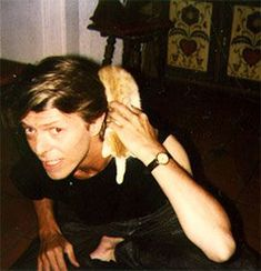 David Bowie chilling with a kitten.