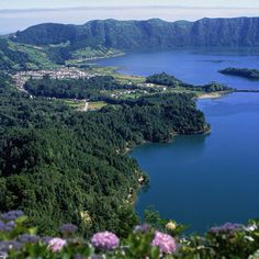 Sao Miguel, Azores... Literally the motherland.