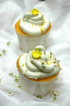 Limoncello Cupcakes with a delicious merigue topping that tastes like marshmallow. One of the best lemon cupcakes ever!