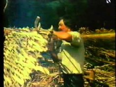 Developing and using a copse (or coppice) for wattle and daub - Jack Hargreaves - Youtube