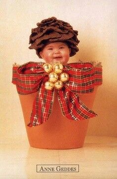 """Anne Geddes - The Twelve Days of Christmas - """"Two Turtle Doves"""" Anne Geddes, Babies First Christmas, Christmas Baby, Cute Baby Pictures, Baby Photos, Cute Kids, Cute Babies, Baby Images, Precious Children"""