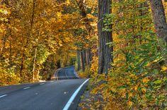 Fall Colors @ Yosemite National Park, CA. HDR of 3 exposures.