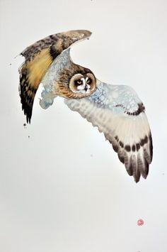 "<span class=""title"">Short Eared Owl II</span>"