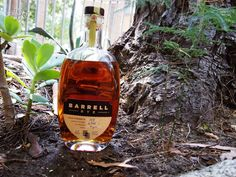 Barrell have become masters of the blend and they're pumping out one great release after another with no signs of slowing down or moving backward in quality. This Barrel Rye Batch 003 is a fantastic global blend and makes me even more excited for what's to come. Rye Whiskey, Whisky, Rye Toast, Caramelized Bananas, Malted Barley, Molasses Cookies, Rye Bread, Dried Cherries, Bourbon Barrel