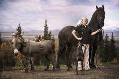 'Dr. Dee: Alaska Vet' Premieres on Animal Planet #veterinarian #animalplanet