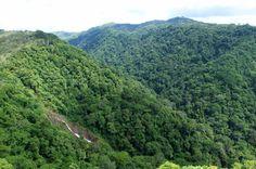 pura vida gardens waterfall   - Costa Rica