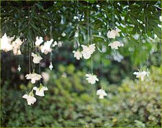 ceremony décor consisted of floating rose heads and crystals hanging from a tree with a simple white rose petal aisle