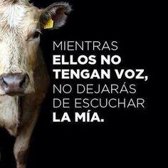 Por los derechos de los animales.