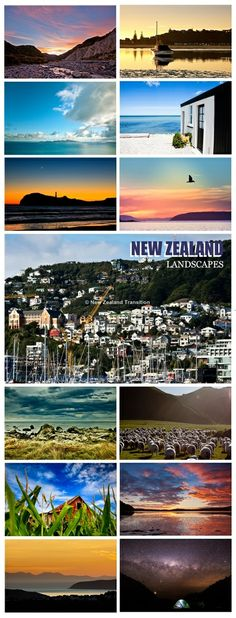 Landscapes - NZ