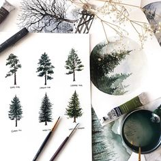 Practicing different pine and fir trees so I can create a variety of trees while painting landscapes. Watercolor Trees, Watercolor Landscape, Landscape Paintings, Watercolor Paintings, Gouache Painting, Painting & Drawing, Drawn Art, Watercolor Techniques, Watercolor Illustration
