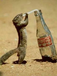 I'm thirsty!