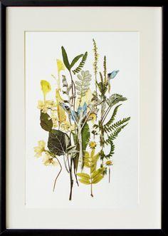 Flower art 02 Framed artwork Original art Botanical art Herbarium artwoks Dried flowers decor Modern art Pressed flowers art work craft