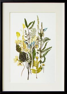 flower art 02 framed artwork original art botanical art herbarium artwoks dried flowers decor modern art
