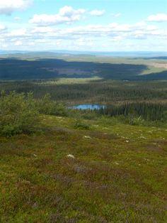 Fulufjället nationaalpark Zweden