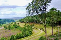 A 5 mile circular walk (easy) around the Devil's Punch Bowl in Surrey - http://thetim.es/13QSRbH