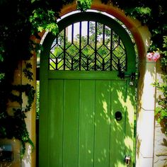 Kelly green backyard door LOVE.